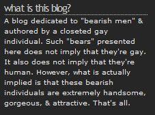 BearMythology's Disclaimer